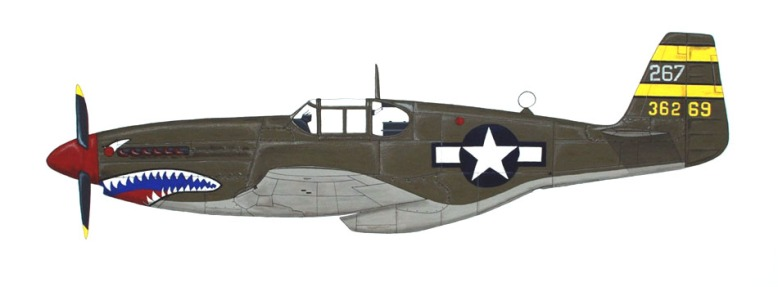 painting_P-51_Hill