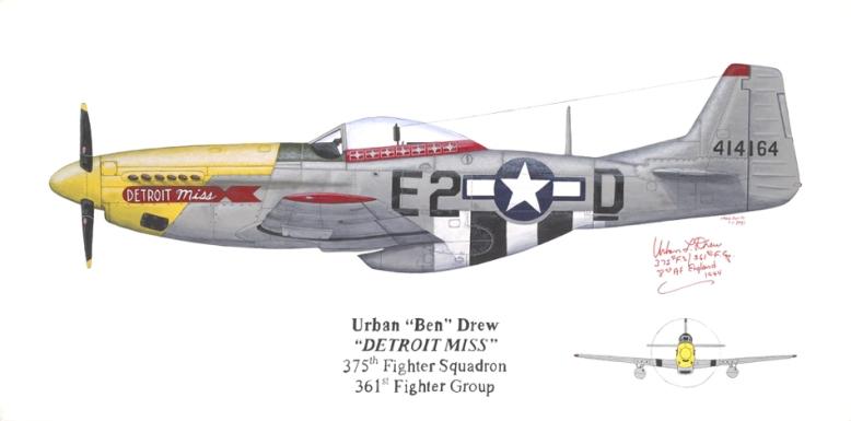 painting_P-51D_Drew_10-91_A
