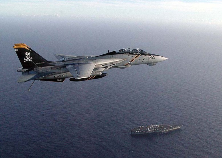 photo_f-14_in_flighta