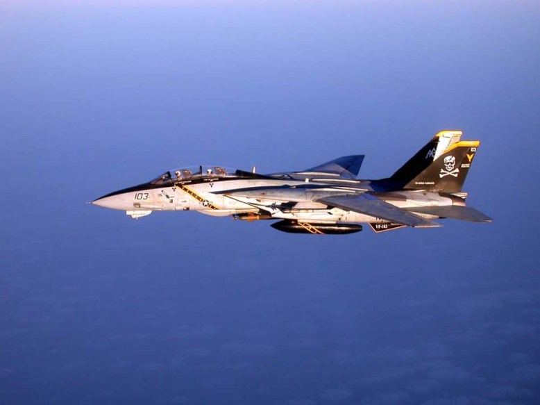 photo_f-14_in_flightd