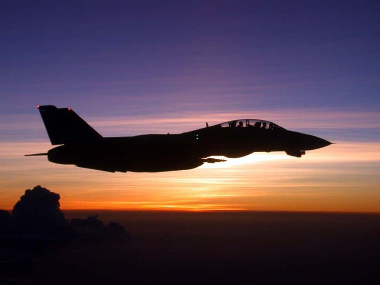 photo_f-14_in_flightm