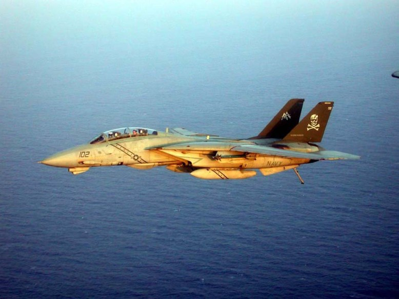 photo_f-14_in_flightr