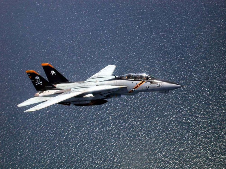 photo_f-14_in_flightt